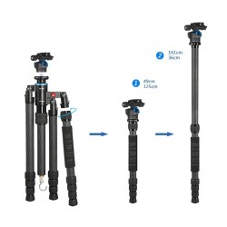 Sirui S-1204-N Carbon Tripod Kit + Genesis Base LPH-25 low profile ballhead